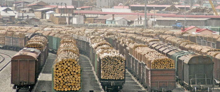 Торгівля деревиною на товарних біржах